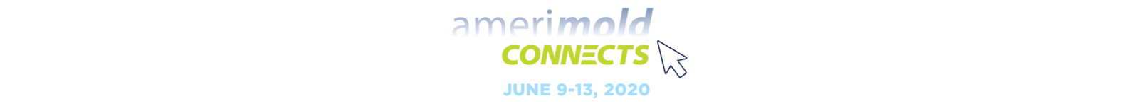 Amerimold Connects 2020 logo